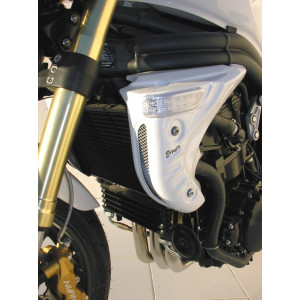 Ecopes Ermax Triumph Speed Triple 1050 05/07