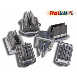Clapets Italkit fibre, Yamaha DTR-TZR 125
