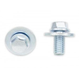 Kit Vis + Rondelles M6x1x12mm Bolt Par 10